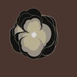 008 Rose01